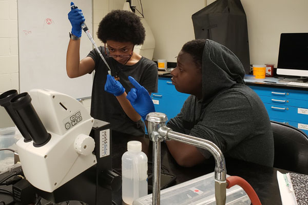 Students pictured working together on a project in a laboratory 3